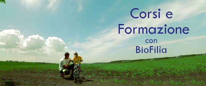 forma_bici_log4