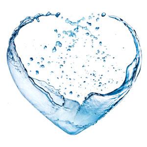 Acqua Biofilia 2