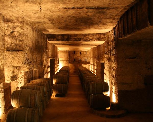 Guida Degustazione Vino